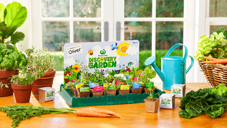 Woolworths discovery garden 24 seedling kits %281%29