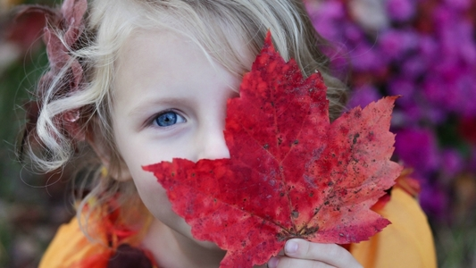 Autumn colours sydney kids