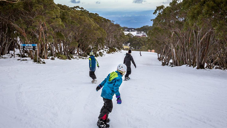 Content mt baw baw alpine resort
